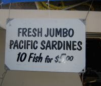 Sardines For Sale