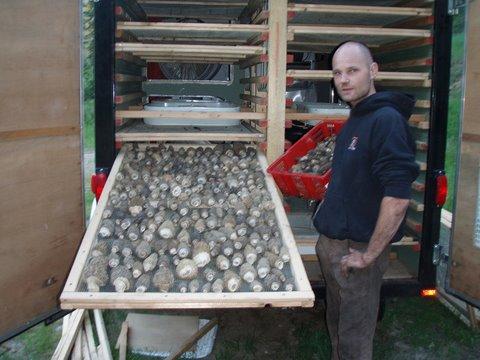 Island artisans untamed feast wild mushroom products don genova 39 s blog - Wild mushrooms business ideas ...